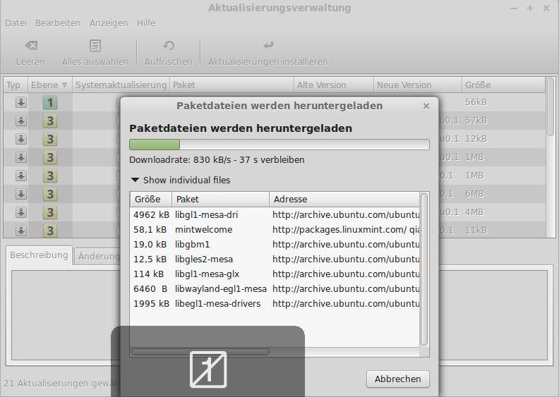 VMware Tools in Linux Mint installieren