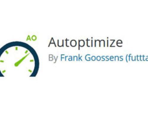 Autoptimize + Avada – Konfiguration TUTORIAL